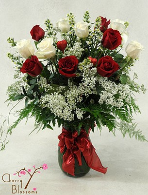 Long-Stem Red & White Roses (60/70cm)